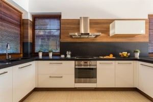 Great Contemporary Styles for Kitchen Renovations